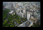 Tokyo from the tower 2