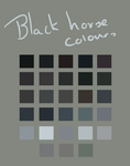 Black Horse Palette