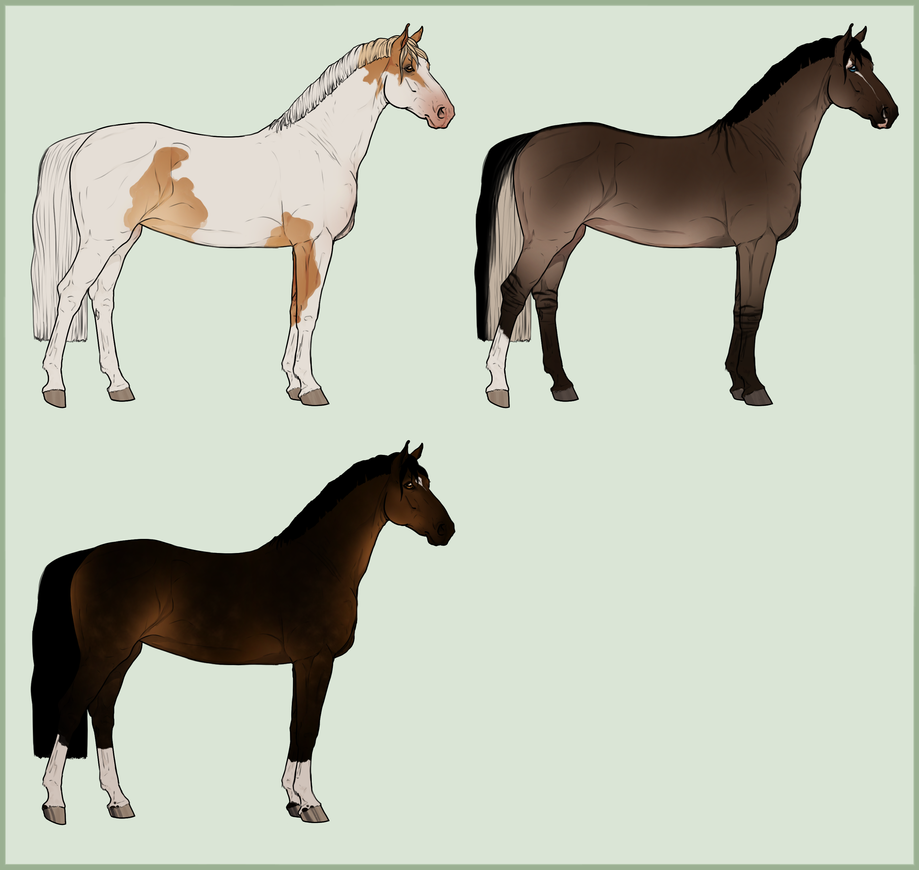 Warmblood Adopts ! One left (seal bay ) by Lone-Onyx-Stardust