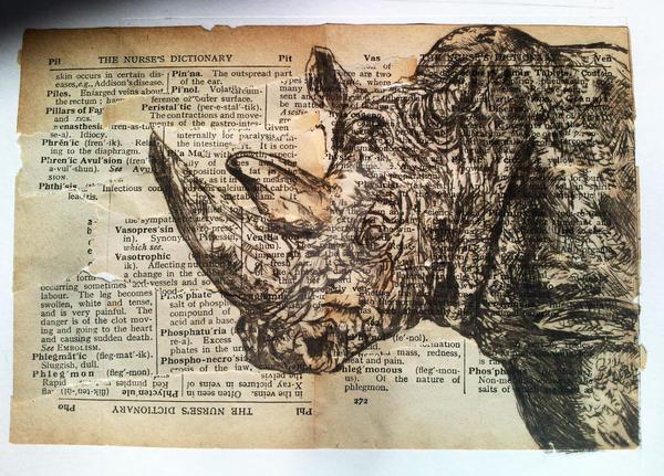 Rhino by stardust12345