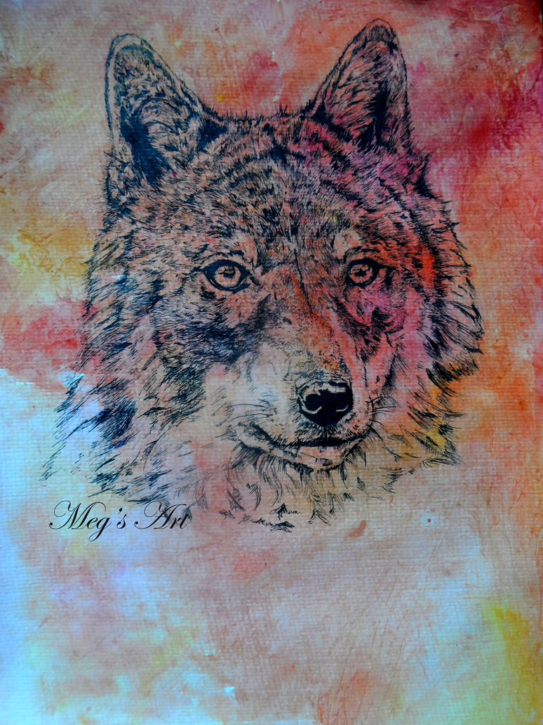 Wolf Head by stardust12345