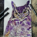 OWL for SALE by stardust12345