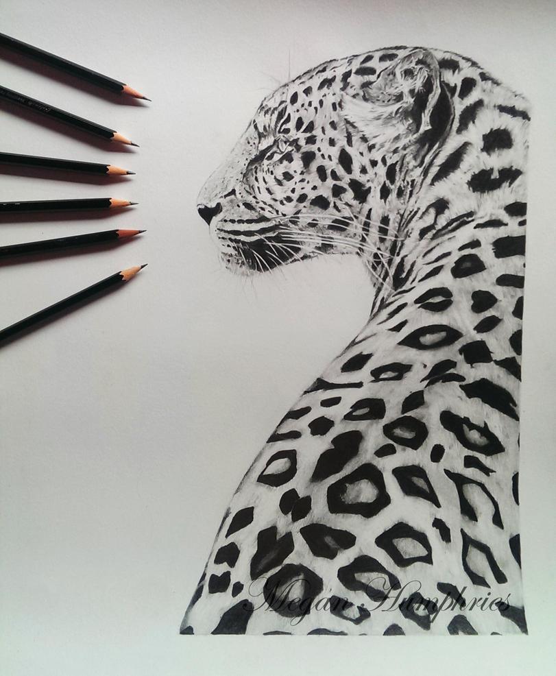 Leopard Pencil Drawings Leopard in pencil by s...