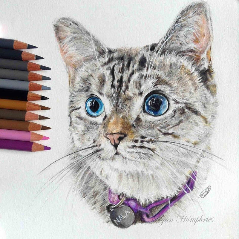 Nala Cat by stardust12345