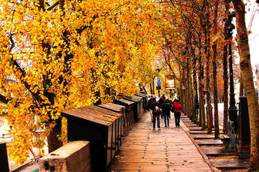Autumn readings by Fixzor