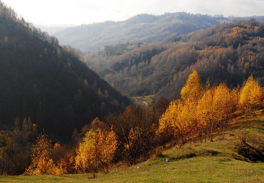Goodbye autumn by ioannnaa96