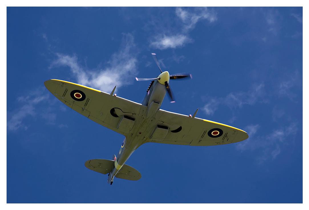 Spitfire by K-y-n-i-u