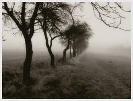 Times of solitude II by skeksis86