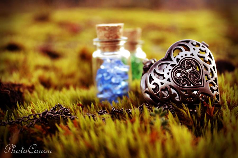 Fairytale by PhotoCanon