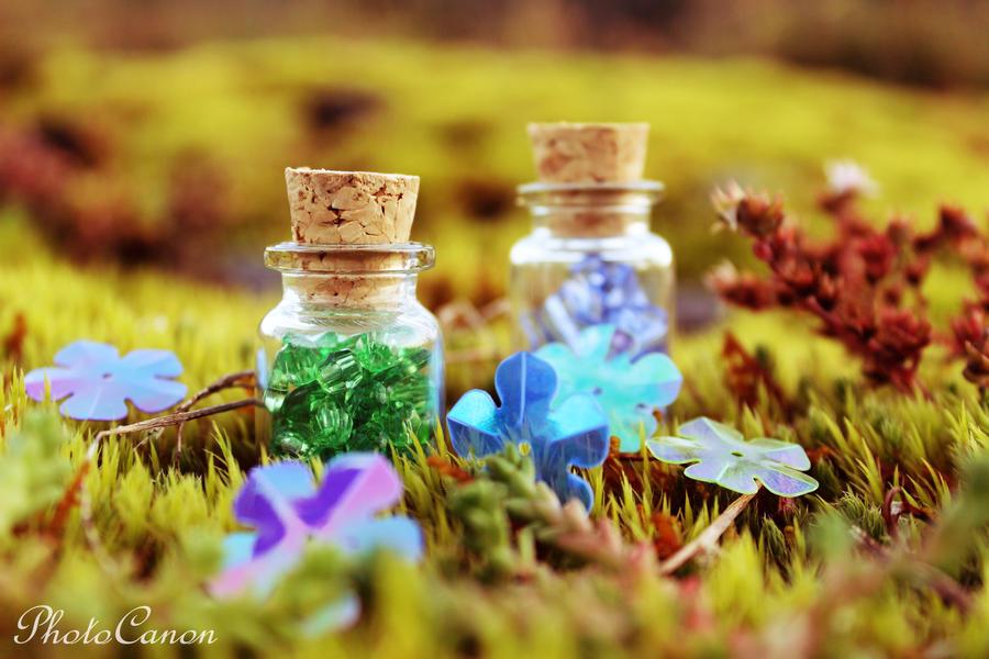 BottleMagic by PhotoCanon