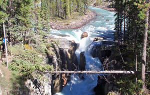 Sunwapta Falls 2