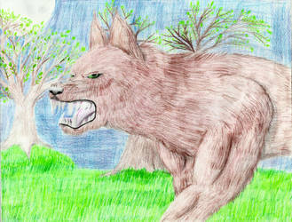 Werewolf in a Field by supersonicwerewolf