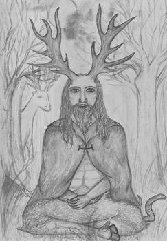 man of the wildwood