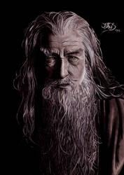 Gandalf by JuanGaleote