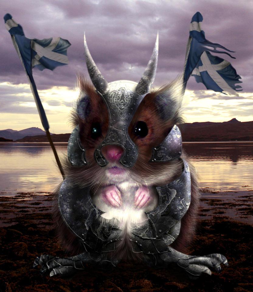 hamster culture Warrior_Hamster_by_BonnySaintANdrew