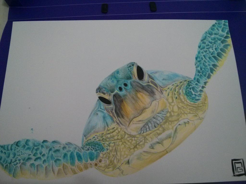 Tartaruga marinha by Ynavoig