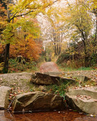 Ardennes 2 by twieja