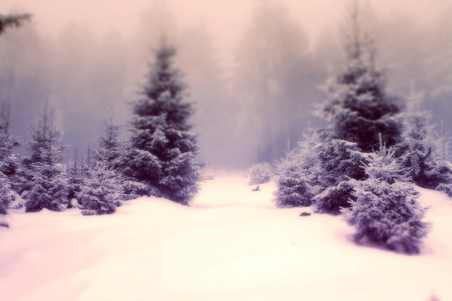 Snow Dream by dill0000n