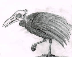 Undead Crow by MrCoolJoeCool