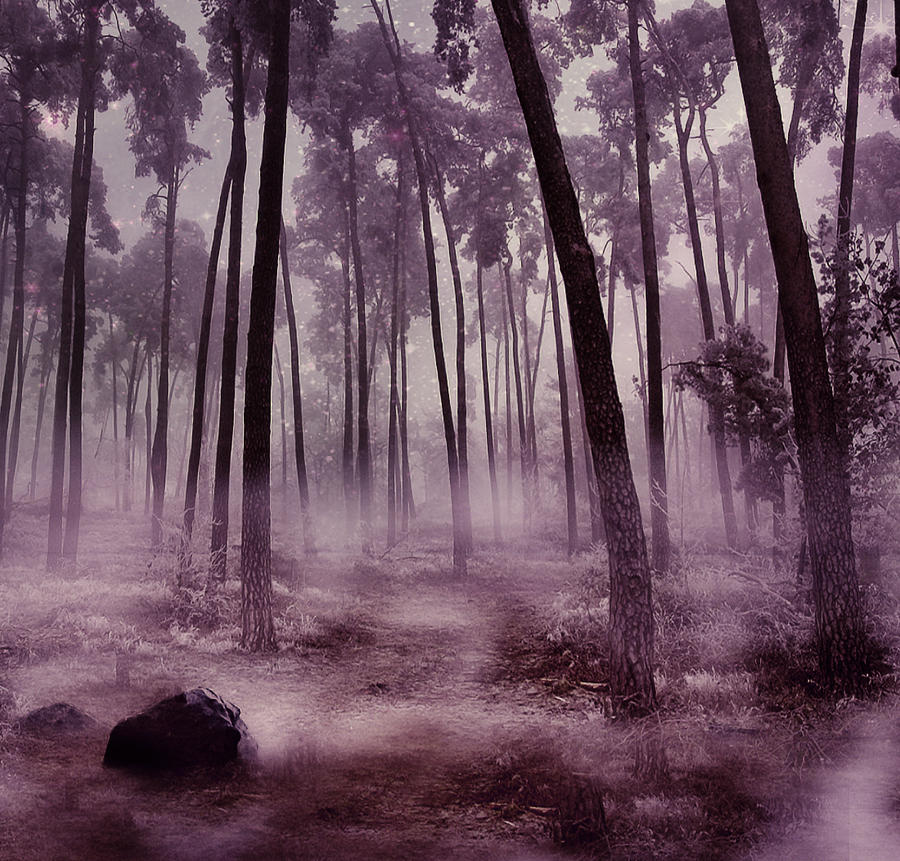 Fantasy Forest Background by brandrificus