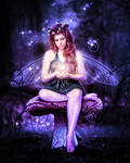 Mushroom Fairy Magic Night