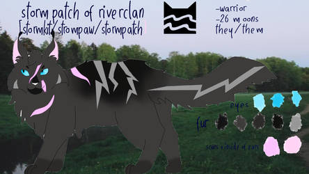 goverment assigned warrior-stormpatch ref
