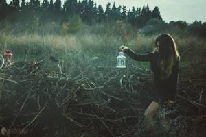 Twilight by gzmrt