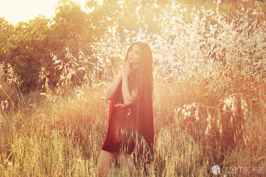 Summer Light by gzmrt