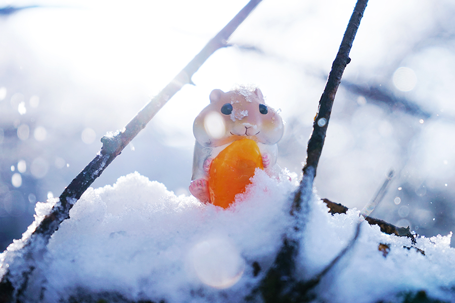 Orange by shuichimeryl