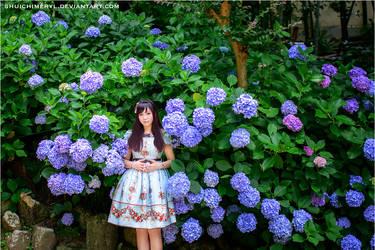 ajisai and strawberry by shuichimeryl