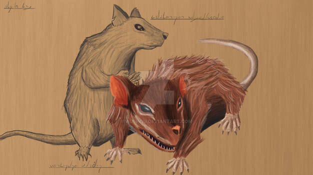 Wyld Rat