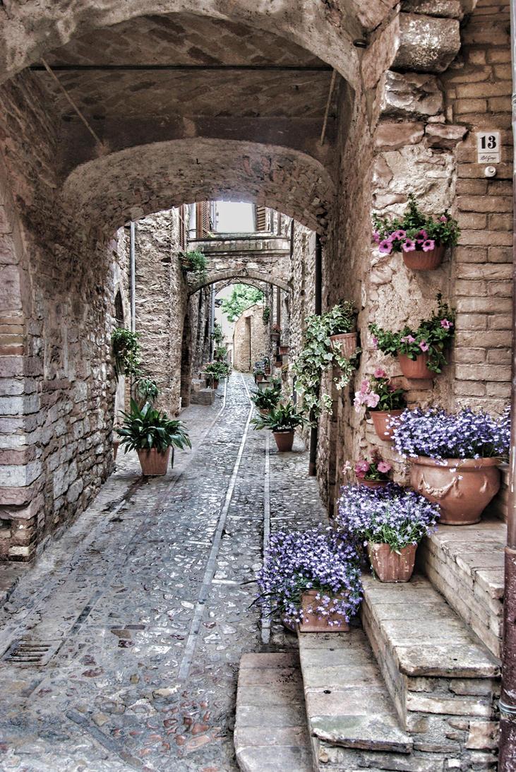 spello e fiori2 by bigTaki