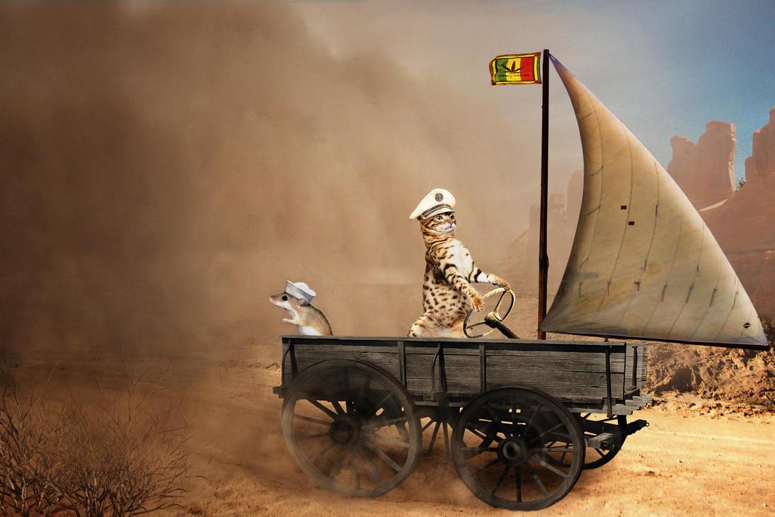 Sandstorm by hankep