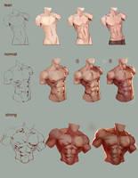 Tutorial male torso by jiuge