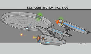 ISS CONSTITUTION