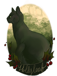 generic hollyleaf picture