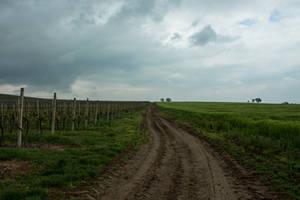 Lonely V4... by Dark-Indigo-Stock