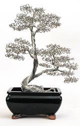 Bonsai Tree #23