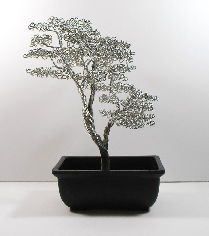 Bonsai Tree #38 by skezzcrom