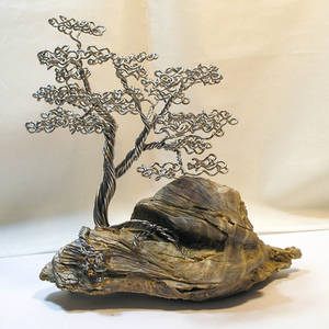 Forever Bonsai Tree T-092