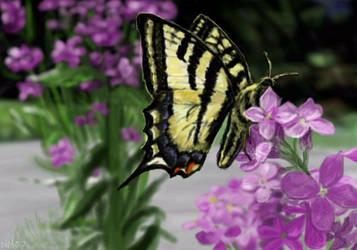 Oekaki: Swallowtail Butterfly by tenjouutena