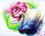 Tropical Swan