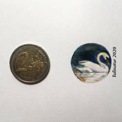 Miniature mute swan