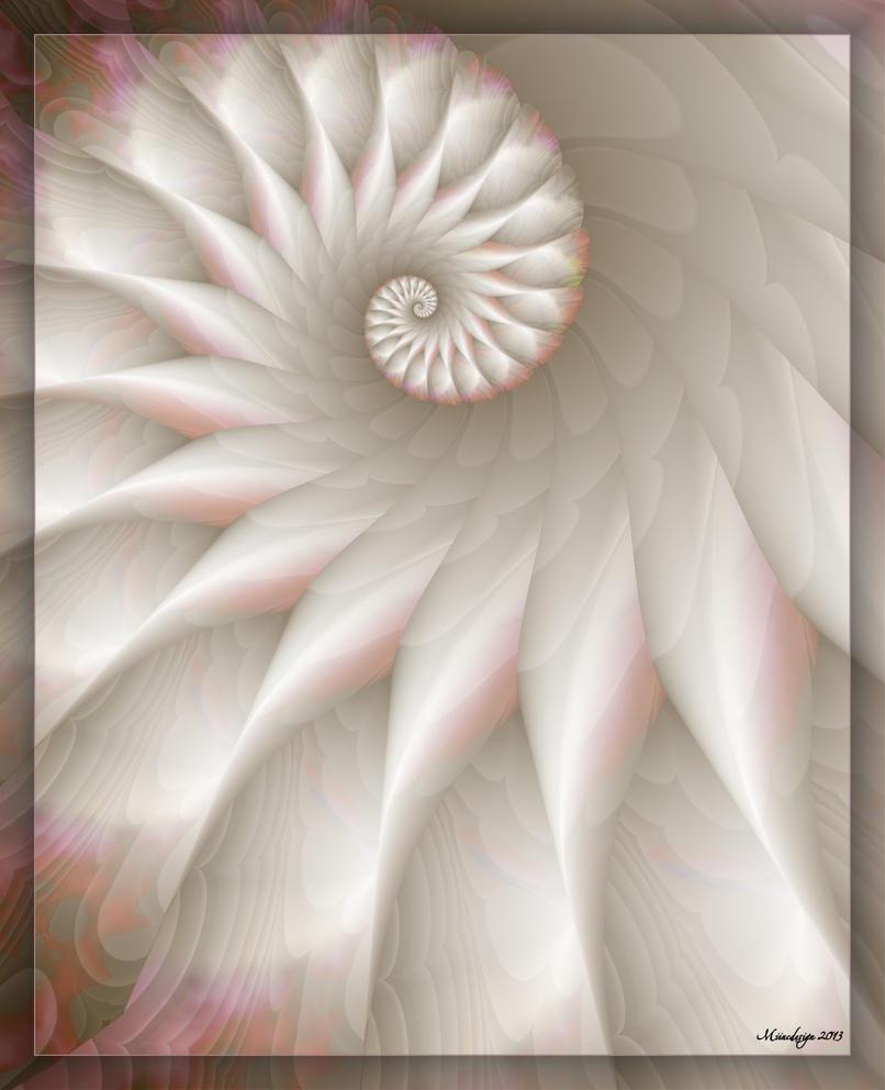 Snow Dove by miincdesign