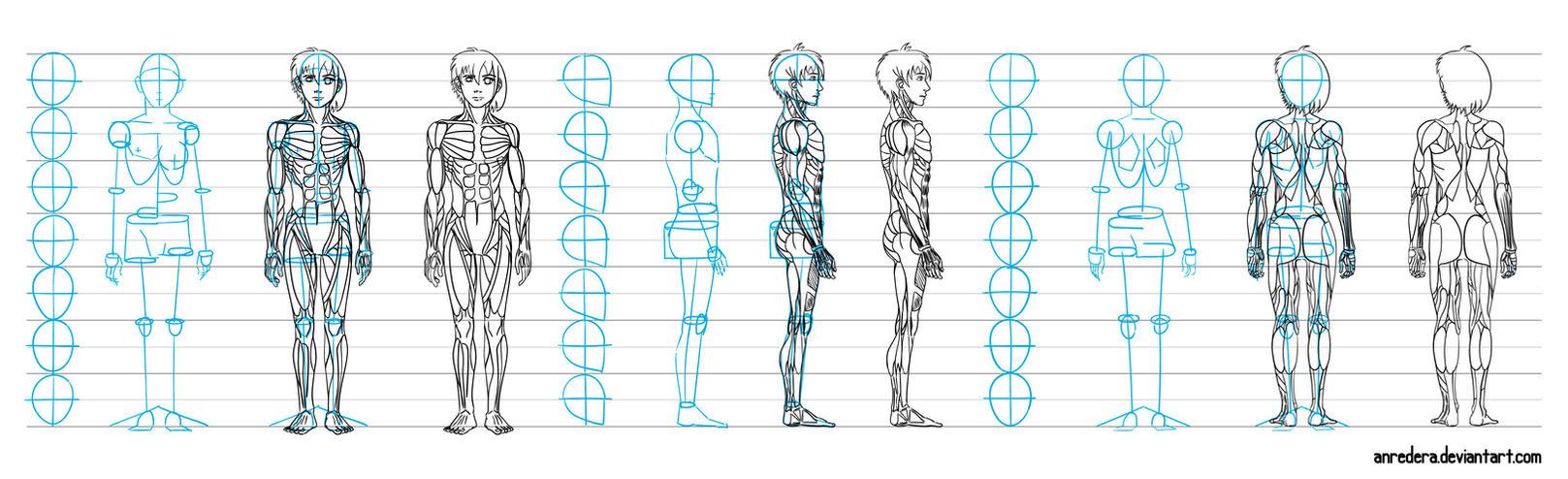 TUTORIAL BODY Woman Anatomy-poses on Drawing-tutorial - DeviantArt