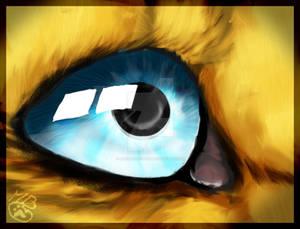Eyes Spicky