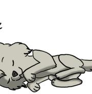 Sleeping dog by Heise-kun