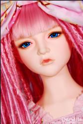 Wonder Cookie Girl 003 by VelvetBat