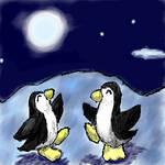 The Penguins' Secret Meeting