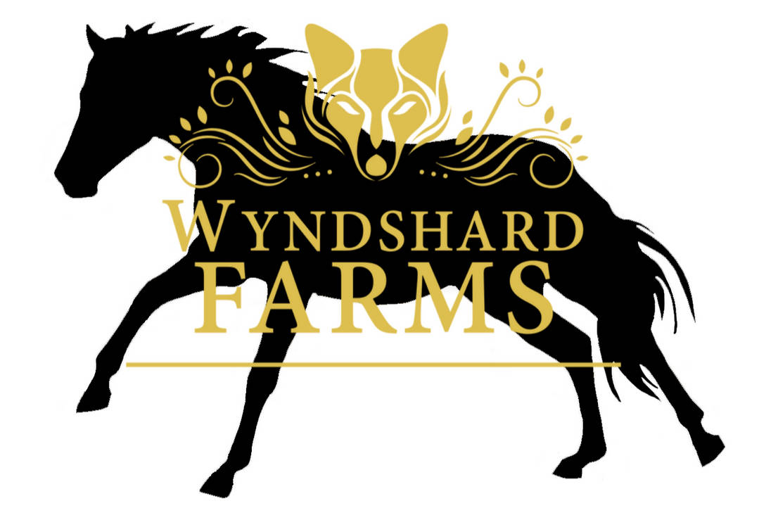 Gallop Wyndshard Logo